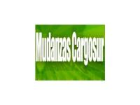 logo MUDANZAS CARGOSUR